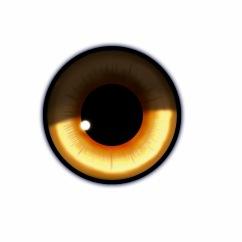Merged eye edited canvas